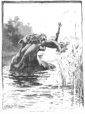 [Image: Bunyip water monster]
